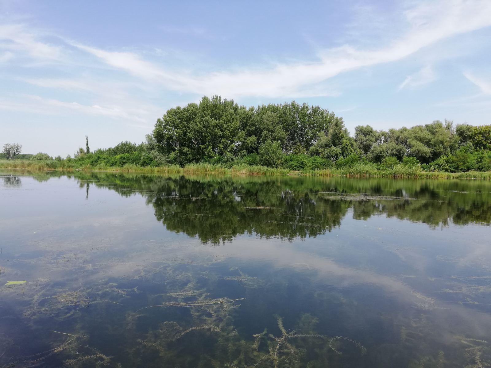 Veliki bački kanal